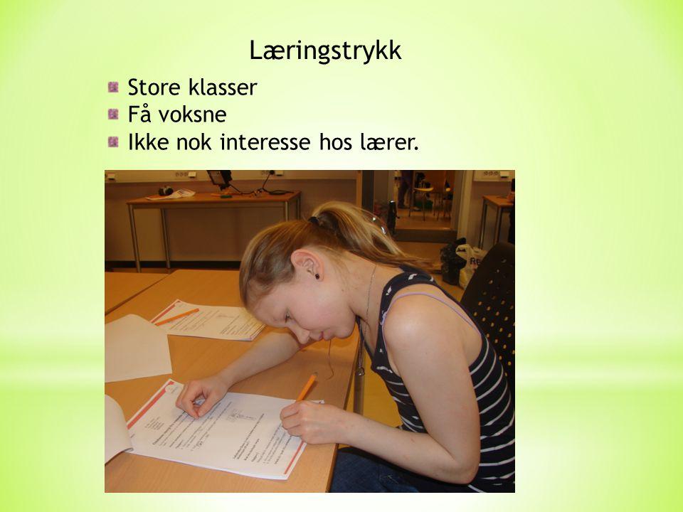 Læringstrykk Store klasser Få voksne Ikke nok interesse hos lærer.