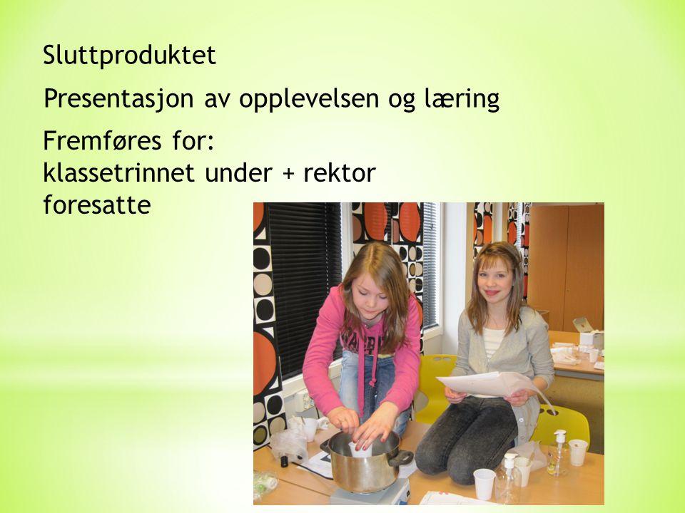 Sluttproduktet Presentasjon av opplevelsen og læring Fremføres for: klassetrinnet under + rektor foresatte
