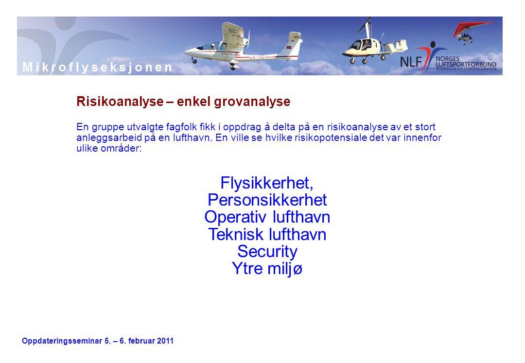 Oppdateringsseminar 5. – 6. februar 2011 Risikoanalyse – enkel grovanalyse En gruppe utvalgte fagfolk fikk i oppdrag å delta på en risikoanalyse av et