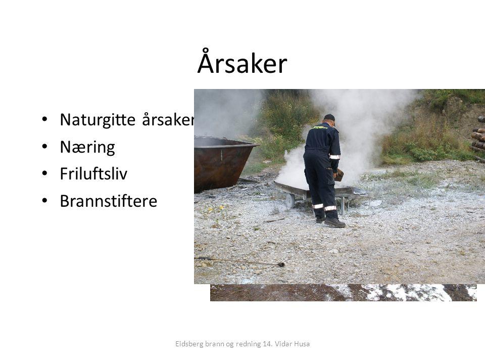 Eidsberg brann og redning 14. Vidar Husa Årsaker Naturgitte årsaker Næring Friluftsliv Brannstiftere