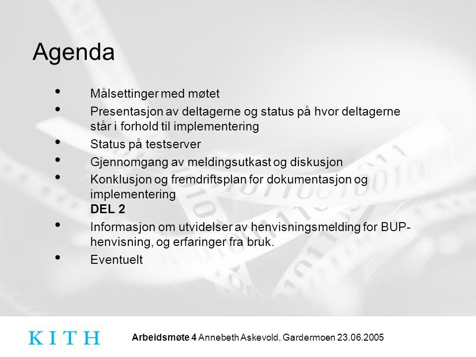 Arbeidsmøte 4 Annebeth Askevold, Gardermoen 23.06.2005 Agenda Målsettinger med møtet Presentasjon av deltagerne og status på hvor deltagerne står i fo