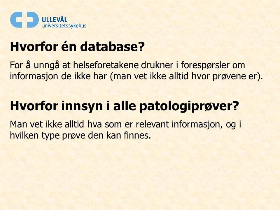 Hvorfor én database.