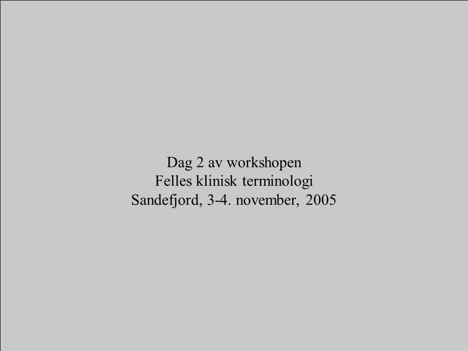 Dag 2 av workshopen Felles klinisk terminologi Sandefjord, 3-4. november, 2005