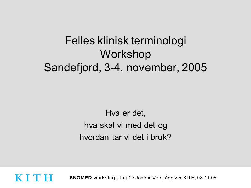 Felles klinisk terminologi Workshop Sandefjord, 3-4. november, 2005 Hva er det, hva skal vi med det og hvordan tar vi det i bruk?