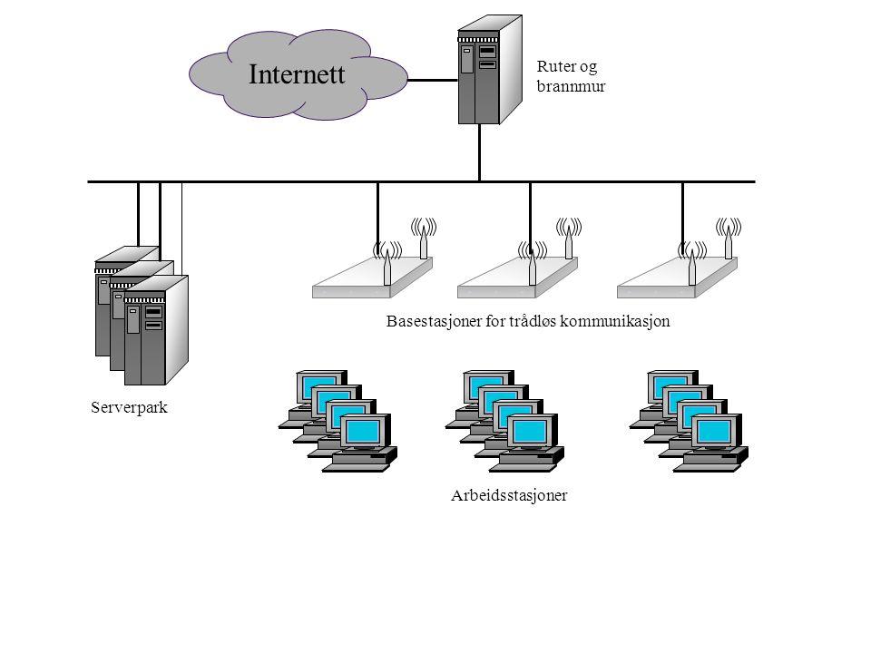 Internett Ruter og brannmur Serverpark Basestasjoner for trådløs kommunikasjon Arbeidsstasjoner