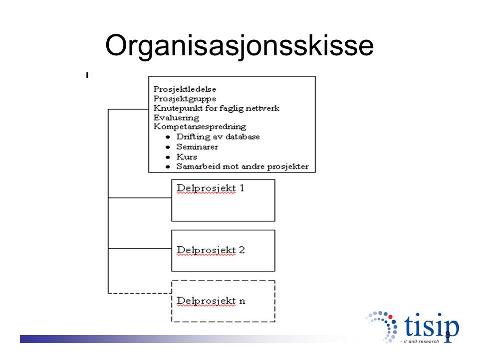 8 Organisasjonsskisse