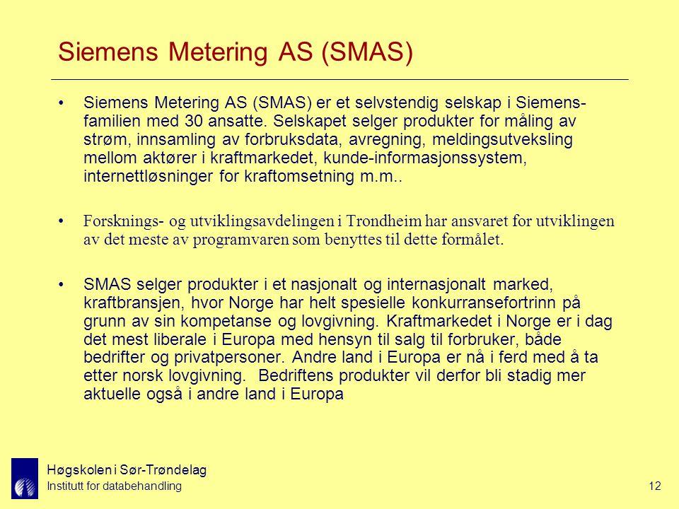 Høgskolen i Sør-Trøndelag Institutt for databehandling12 Siemens Metering AS (SMAS) Siemens Metering AS (SMAS) er et selvstendig selskap i Siemens- familien med 30 ansatte.
