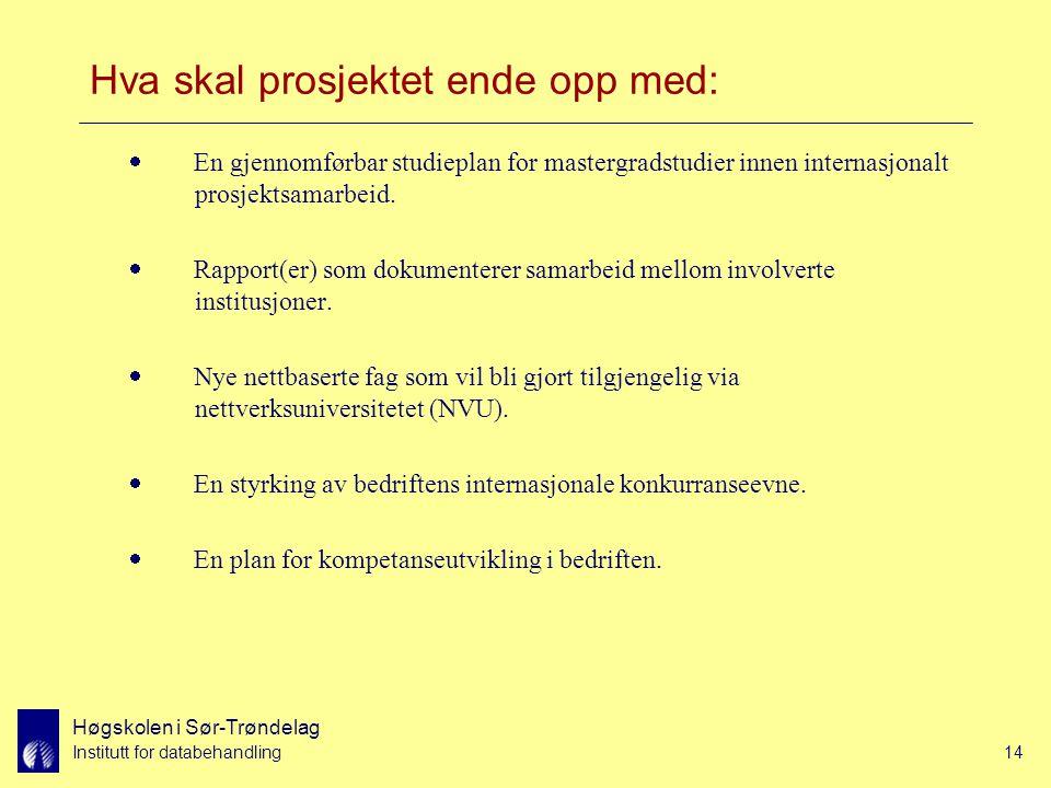 Høgskolen i Sør-Trøndelag Institutt for databehandling14 Hva skal prosjektet ende opp med:  En gjennomførbar studieplan for mastergradstudier innen internasjonalt prosjektsamarbeid.