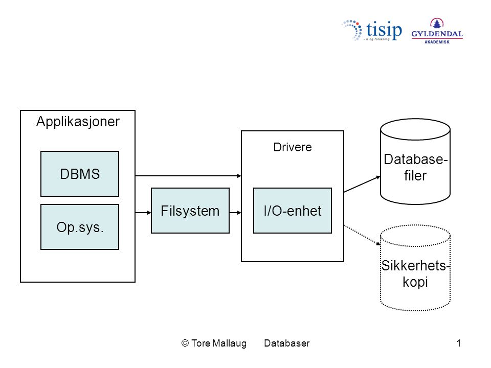 © Tore Mallaug Databaser1 DBMS Op.sys.