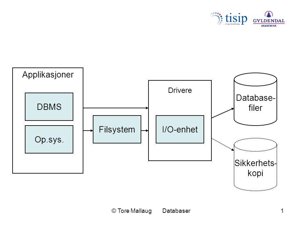 © Tore Mallaug Databaser1 DBMS Op.sys. FilsystemI/O-enhet Applikasjoner Drivere Sikkerhets- kopi Database- filer