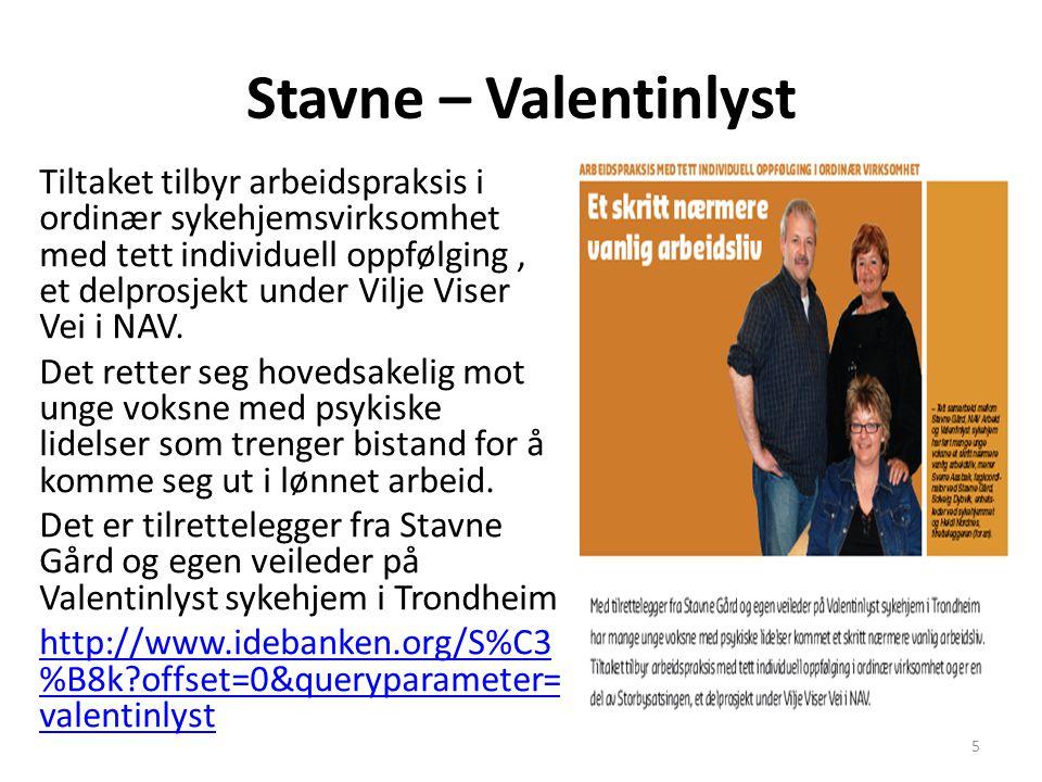 Stavne – Valentinlyst Tiltaket tilbyr arbeidspraksis i ordinær sykehjemsvirksomhet med tett individuell oppfølging, et delprosjekt under Vilje Viser Vei i NAV.