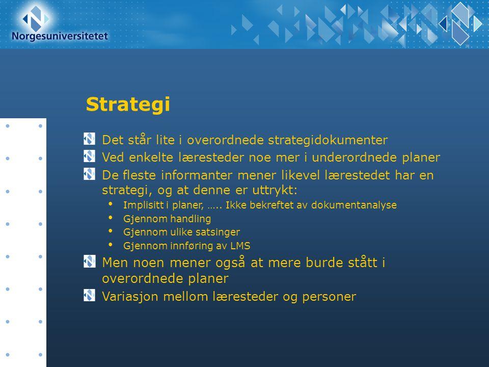 Strategi Det står lite i overordnede strategidokumenter Ved enkelte læresteder noe mer i underordnede planer De fleste informanter mener likevel læres