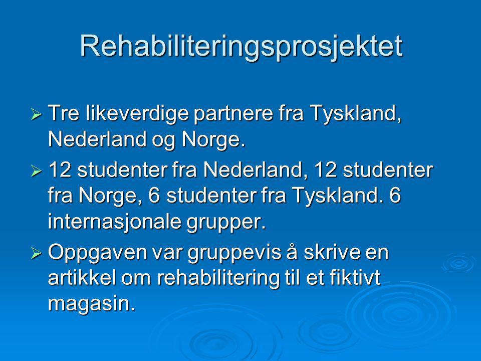 Rehabiliteringsprosjektet  Tre likeverdige partnere fra Tyskland, Nederland og Norge.  12 studenter fra Nederland, 12 studenter fra Norge, 6 student