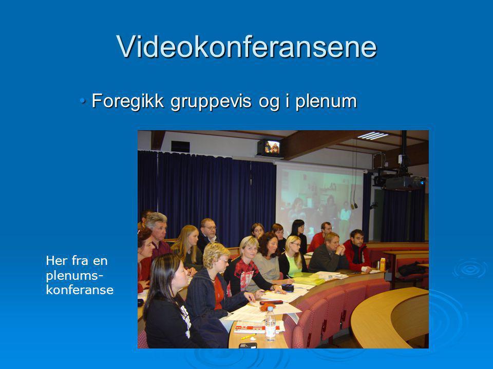 Videokonferansene Foregikk gruppevis og i plenumForegikk gruppevis og i plenum Her fra en plenums- konferanse