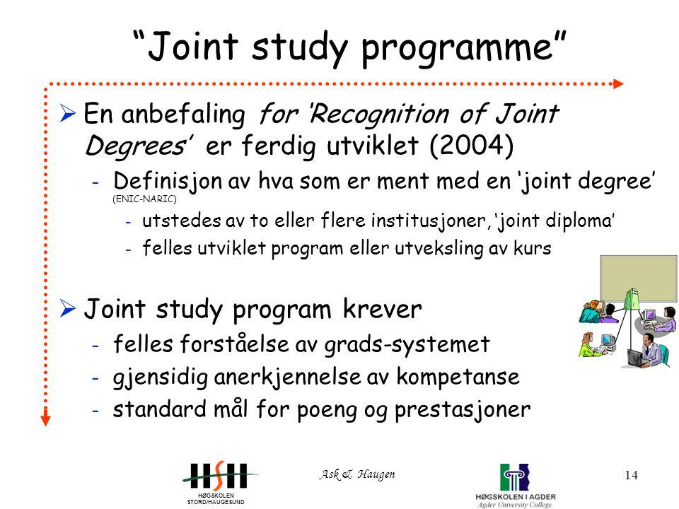 HØGSKOLEN STORD/HAUGESUND Ask & Haugen 14 Joint study programme  En anbefaling for 'Recognition of Joint Degrees' er ferdig utviklet (2004) - Definisjon av hva som er ment med en 'joint degree' (ENIC-NARIC) - utstedes av to eller flere institusjoner, 'joint diploma' - felles utviklet program eller utveksling av kurs  Joint study program krever - felles forståelse av grads-systemet - gjensidig anerkjennelse av kompetanse - standard mål for poeng og prestasjoner