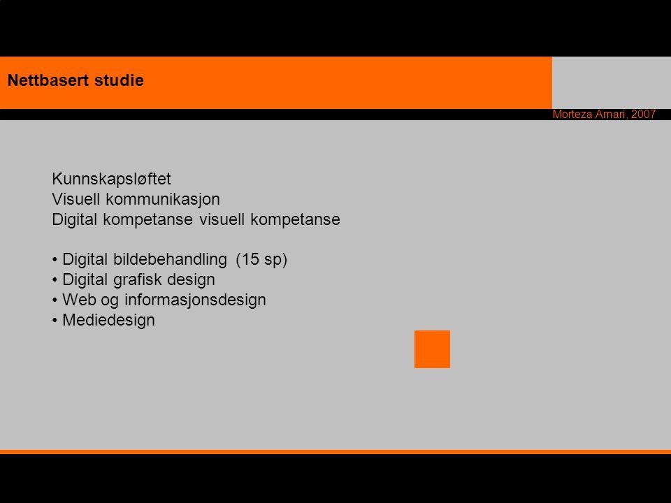 Morteza Amari, 2007 Nettbasert studie Kunnskapsløftet Visuell kommunikasjon Digital kompetanse visuell kompetanse Digital bildebehandling (15 sp) Digi
