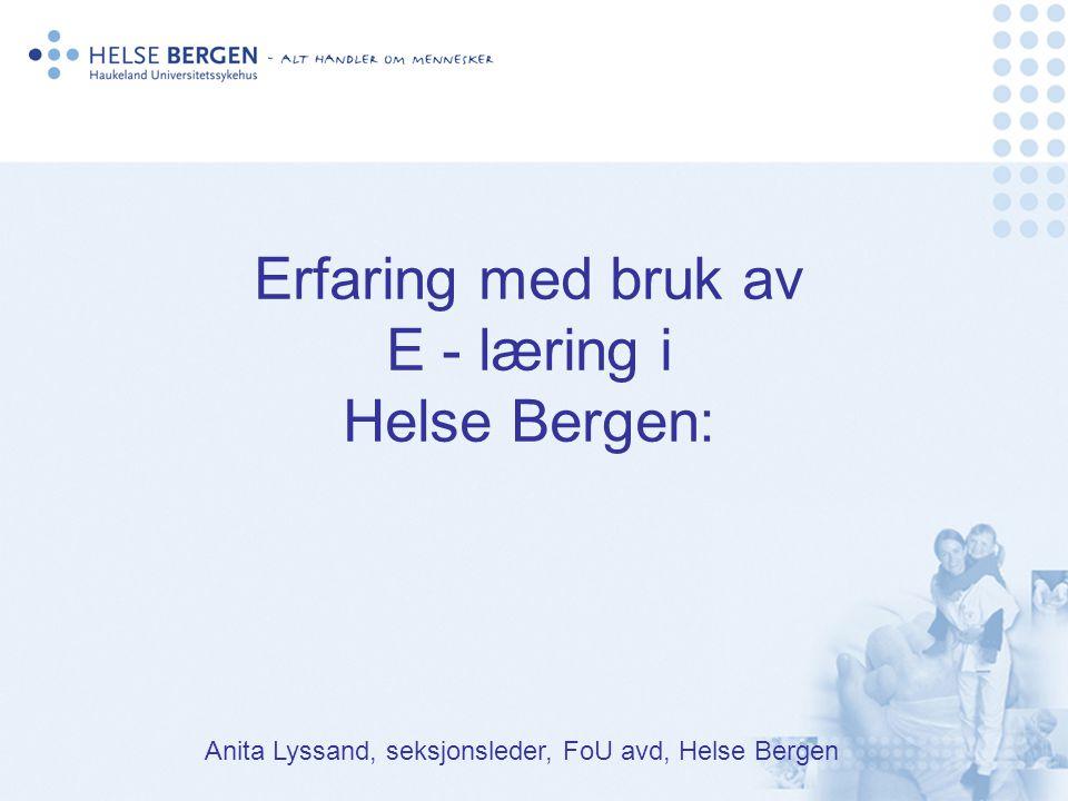 Kort om Helse Bergen: 1.100 senger 5,18 milliarder kroner (driftskostnader 2004) 490 000 liggedøgn, 400 000 dagpasienter Gj.snittlig liggetid 3,44 døgn 8.500 ansatte, 6.800 årsverk, Stor spredning i oppgaver og utdanningsnivå Turn-over….