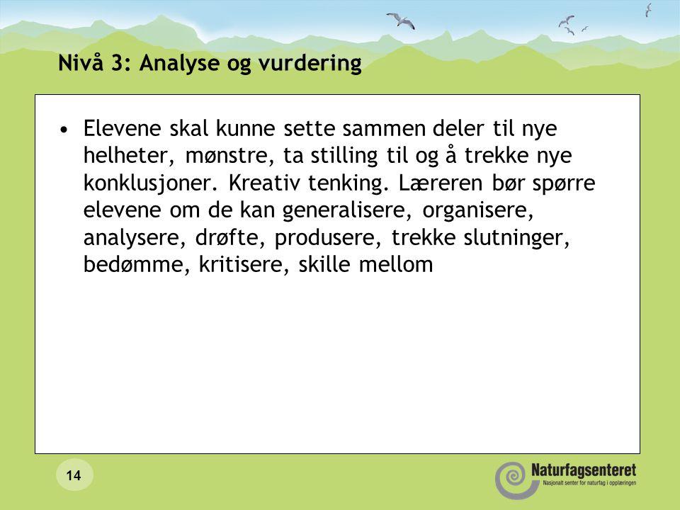 14 Nivå 3: Analyse og vurdering Elevene skal kunne sette sammen deler til nye helheter, mønstre, ta stilling til og å trekke nye konklusjoner.