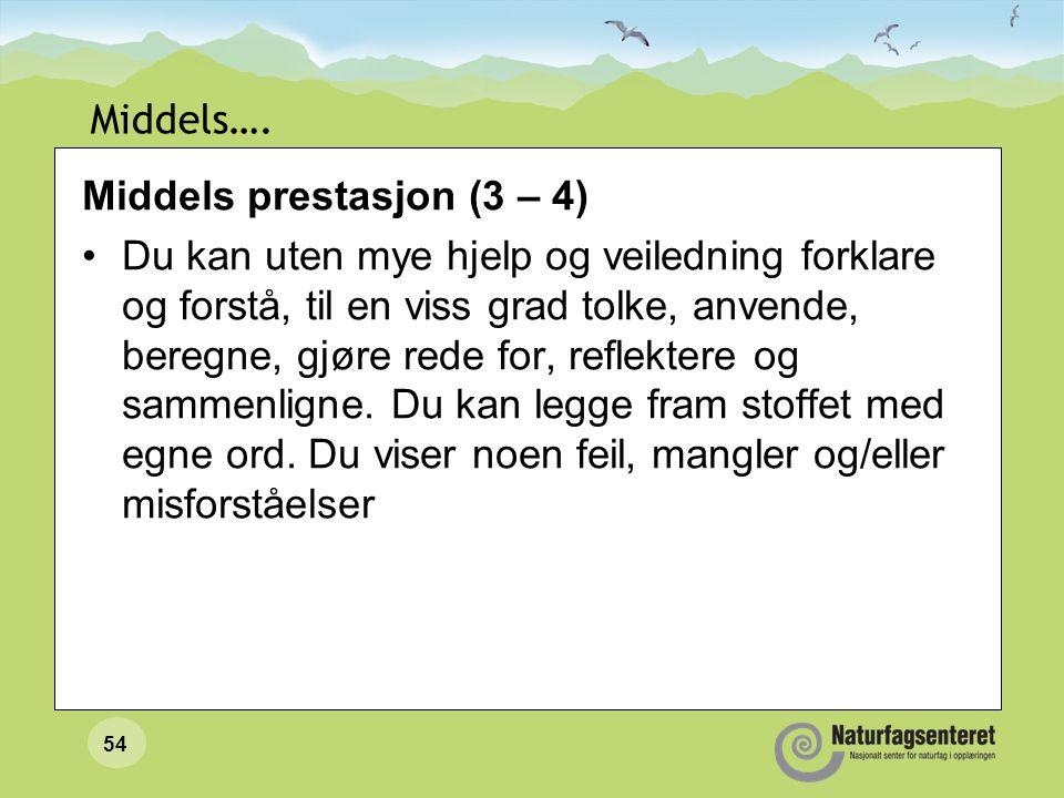 54 Middels…. Middels prestasjon (3 – 4) Du kan uten mye hjelp og veiledning forklare og forstå, til en viss grad tolke, anvende, beregne, gjøre rede f