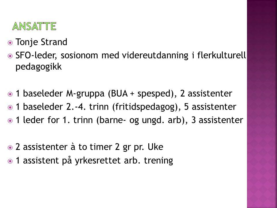  Tonje Strand  SFO-leder, sosionom med videreutdanning i flerkulturell pedagogikk  1 baseleder M-gruppa (BUA + spesped), 2 assistenter  1 baseleder 2.-4.