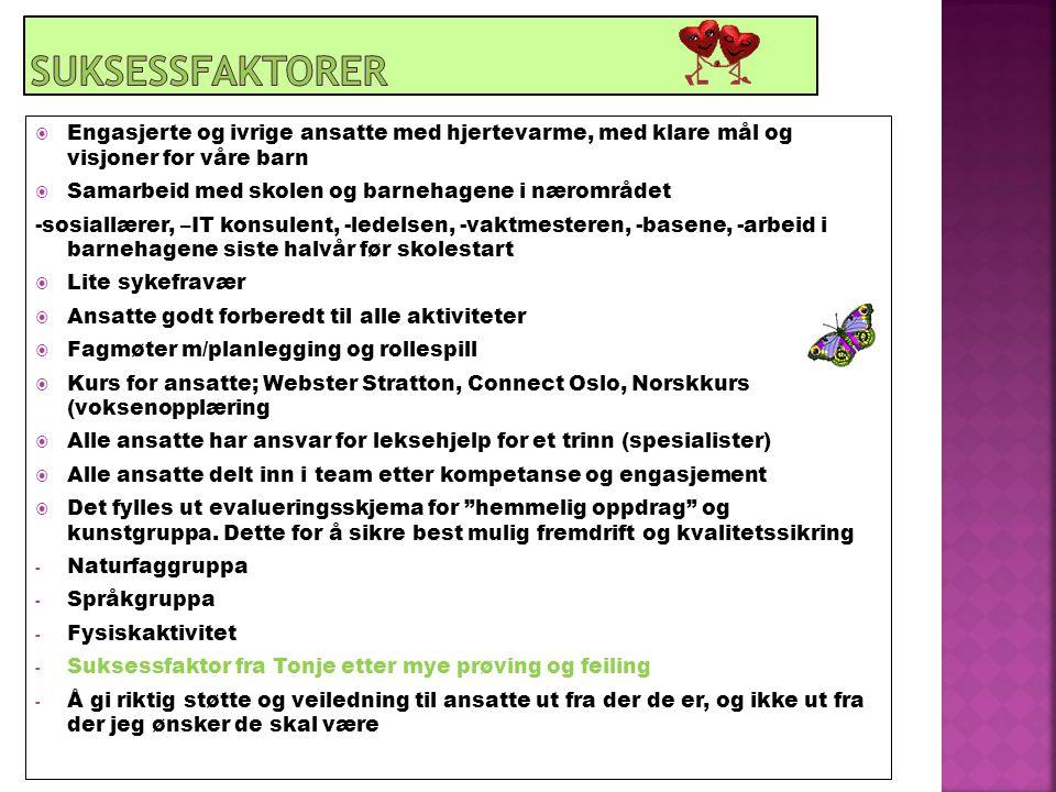  Engasjerte og ivrige ansatte med hjertevarme, med klare mål og visjoner for våre barn  Samarbeid med skolen og barnehagene i nærområdet -sosiallærer, –IT konsulent, -ledelsen, -vaktmesteren, -basene, -arbeid i barnehagene siste halvår før skolestart  Lite sykefravær  Ansatte godt forberedt til alle aktiviteter  Fagmøter m/planlegging og rollespill  Kurs for ansatte; Webster Stratton, Connect Oslo, Norskkurs (voksenopplæring  Alle ansatte har ansvar for leksehjelp for et trinn (spesialister)  Alle ansatte delt inn i team etter kompetanse og engasjement  Det fylles ut evalueringsskjema for hemmelig oppdrag og kunstgruppa.