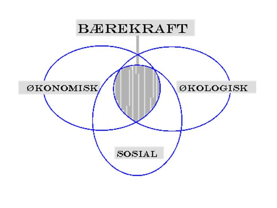 Mål 1: Undervisningen omfatter bærekraft i teori og praksis Mål 2: Institusjonens drift er bærekraftig Mål 3: Institusjonen skaper folkeopplysning samt allmenn og politisk debatt om bærekraftig utvikling