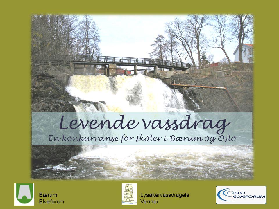 Bærum Elveforum Lysakervassdragets Venner Levende vassdrag En konkurranse for skoler i Bærum og Oslo