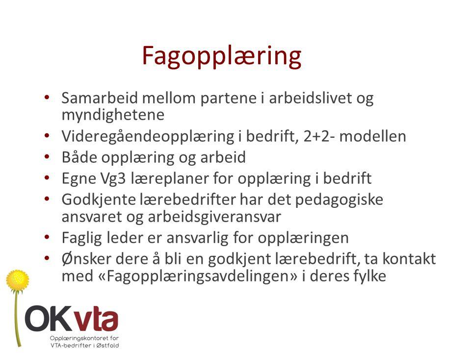 Del 2: Lærekandidatordningen i FASVO