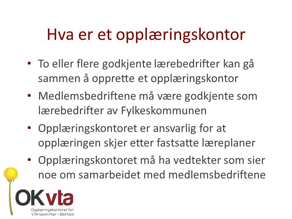 Etablering av et opplæringskontor Satt ned en arbeidsgruppe som ble et interrimsstyre – 4 fra VTA- bedriftene – 1 fra PPT – 1 fra NAV – Fagkonsulenten fra Fylkeskommunen Innhentet erfaringer fra andre opplæringskontorer Var på omvisning i Trøskenveien i mai 2010