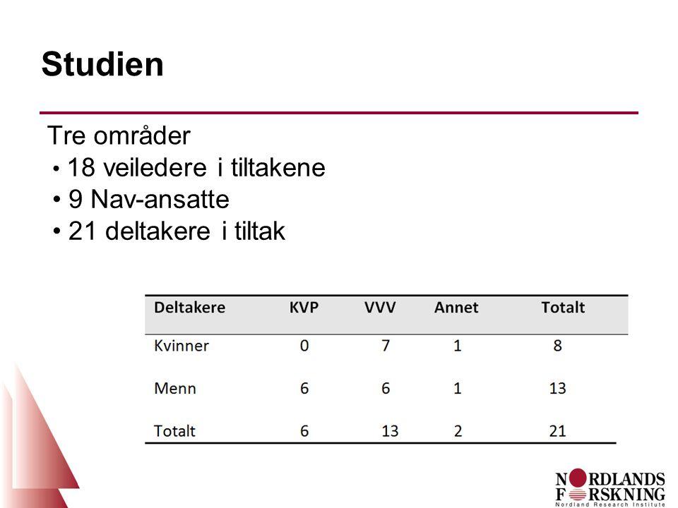 Studien Tre områder 18 veiledere i tiltakene 9 Nav-ansatte 21 deltakere i tiltak