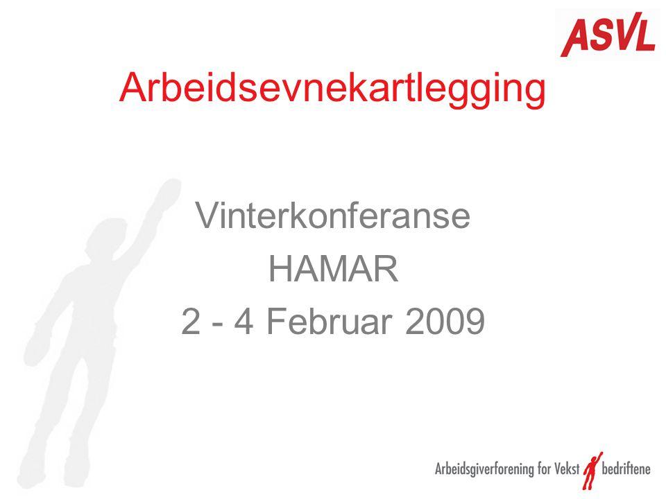Arbeidsevnekartlegging Vinterkonferanse HAMAR 2 - 4 Februar 2009