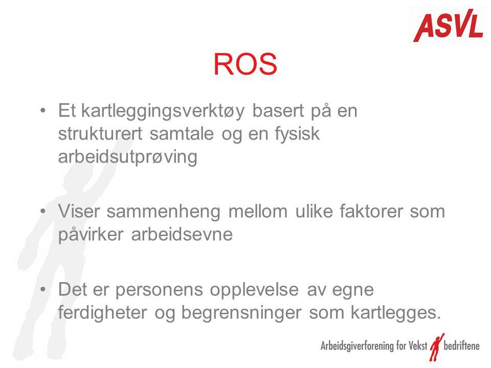 ROS Et kartleggingsverktøy basert på en strukturert samtale og en fysisk arbeidsutprøving Viser sammenheng mellom ulike faktorer som påvirker arbeidse