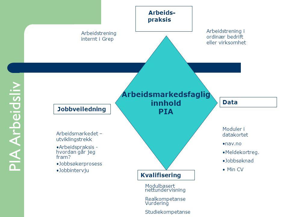 PIA Arbeidsliv Arbeidsmarkedsfaglig innhold PIA Arbeids- praksis Arbeidstrening i ordinær bedrift eller virksomhet Arbeidstrening internt i Grep Data