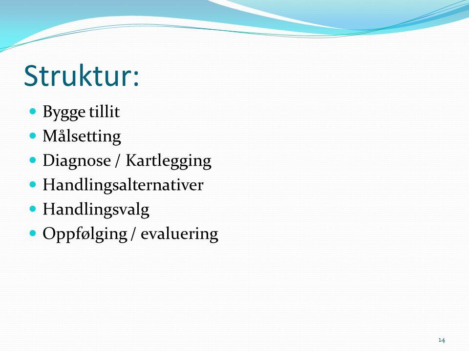 Struktur: Bygge tillit Målsetting Diagnose / Kartlegging Handlingsalternativer Handlingsvalg Oppfølging / evaluering 14