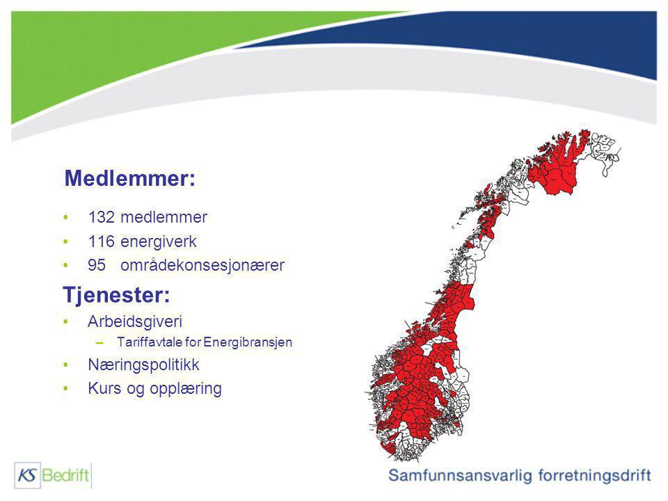 Medlemmer: 132 medlemmer 116 energiverk 95 områdekonsesjonærer Tjenester: Arbeidsgiveri –Tariffavtale for Energibransjen Næringspolitikk Kurs og opplæ