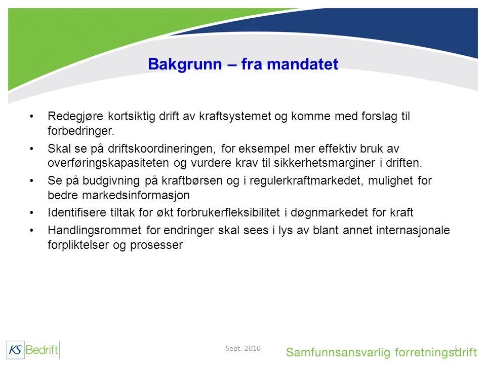 Bakgrunn – fra mandatet Redegjøre kortsiktig drift av kraftsystemet og komme med forslag til forbedringer.