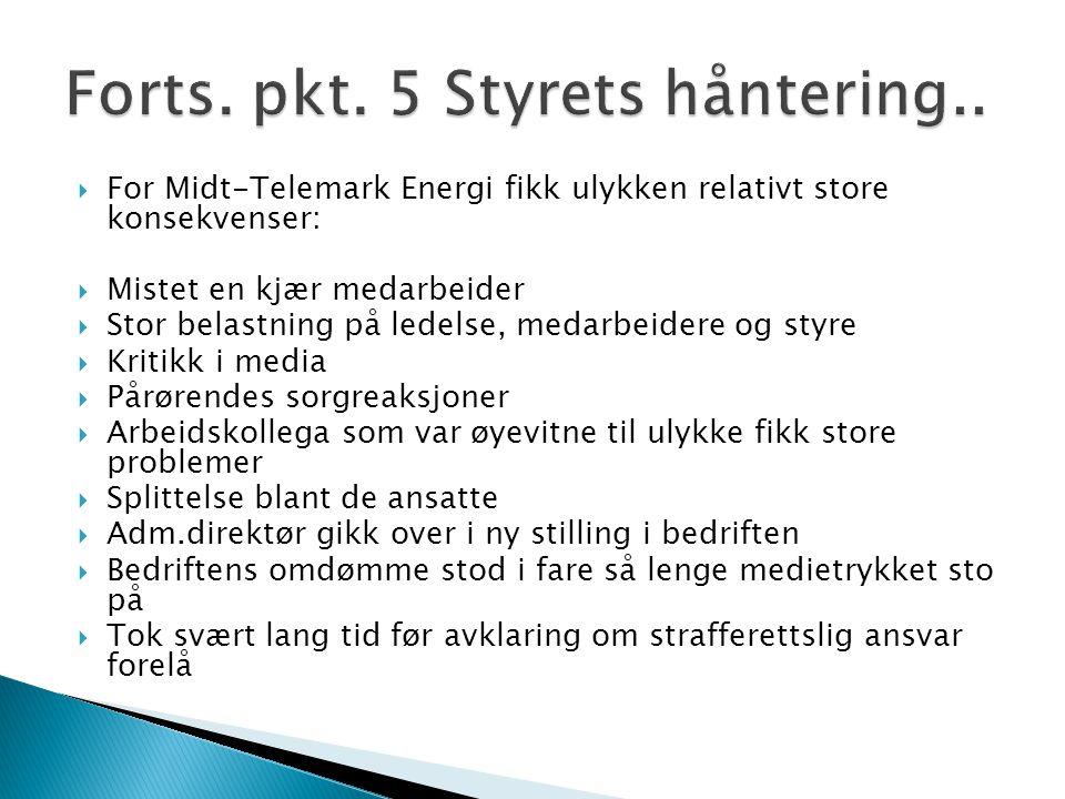  For Midt-Telemark Energi fikk ulykken relativt store konsekvenser:  Mistet en kjær medarbeider  Stor belastning på ledelse, medarbeidere og styre