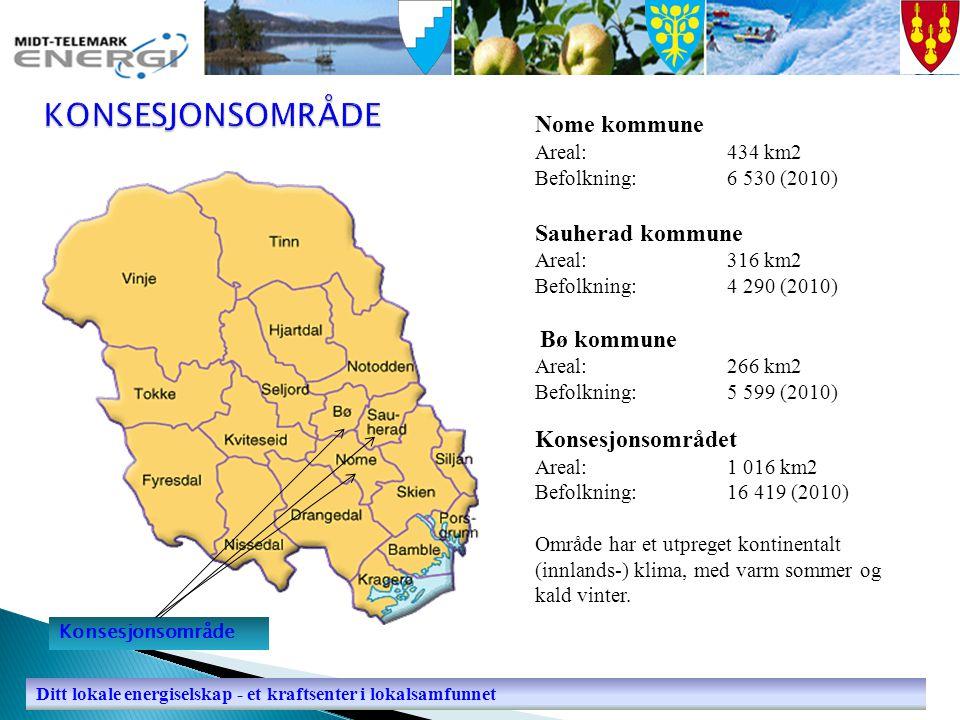  Etablert: 18.11.2003 Bø, Sauherad (BSE) og Nome (BSE tidligere Bø og Sauherad 27.12.1991)  Eierstruktur: 40 % Nome kommune 36 % Bø kommune 24 % Sauherad kommune  Antall ansatte: 34 (31,2 årsverk)  Selskapets omsetning var i 2009 på NOK 136 mill, og årsresultatet ble NOK 9,8 mill  Avkastningen på nettkapitalen var i 2009 på 7,44 % (driftsresultat/NVE-kapital).