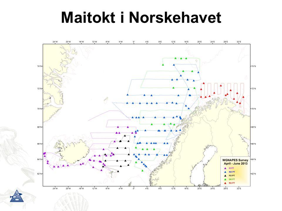 Maitokt i Norskehavet