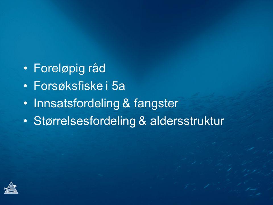 Foreløpig råd Forsøksfiske i 5a Innsatsfordeling & fangster Størrelsesfordeling & aldersstruktur