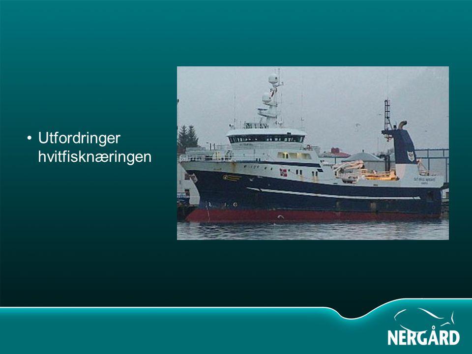 Verdi norsk fangst 2007