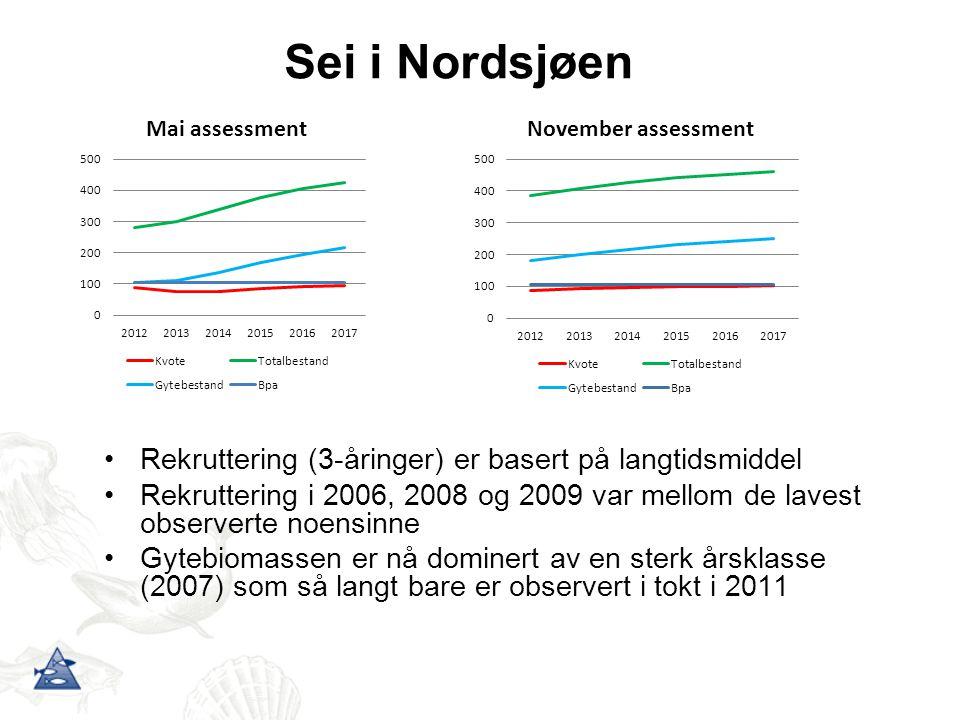 Sei i Nordsjøen Rekruttering (3-åringer) er basert på langtidsmiddel Rekruttering i 2006, 2008 og 2009 var mellom de lavest observerte noensinne Gytebiomassen er nå dominert av en sterk årsklasse (2007) som så langt bare er observert i tokt i 2011
