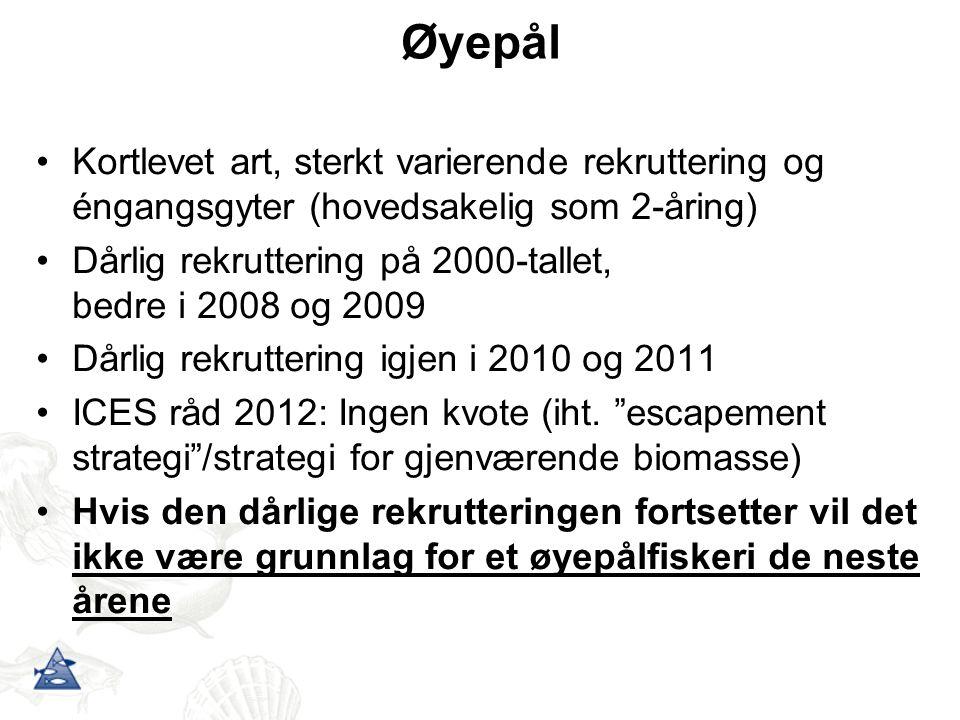 Øyepål Kortlevet art, sterkt varierende rekruttering og éngangsgyter (hovedsakelig som 2-åring) Dårlig rekruttering på 2000-tallet, bedre i 2008 og 2009 Dårlig rekruttering igjen i 2010 og 2011 ICES råd 2012: Ingen kvote (iht.