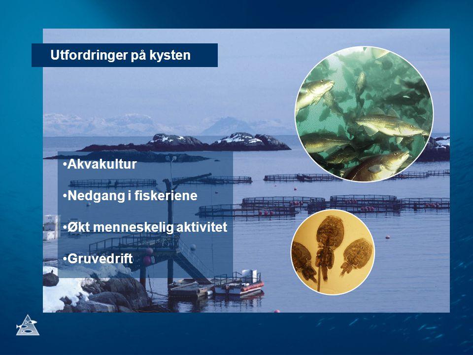 Utfordringer på kysten Akvakultur Nedgang i fiskeriene Økt menneskelig aktivitet Gruvedrift