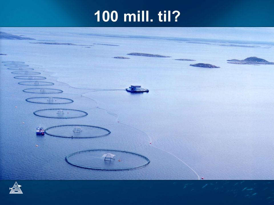 100 mill. til? Satsinger: Bærekraftighetsindikatorer - lakselus og rømt laks Rekrutteringsmekanismer og økosystemforståelse Karbonsyklus og matproduks