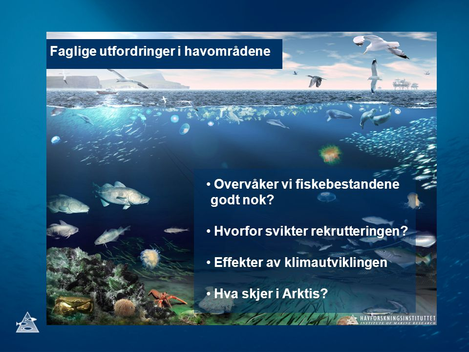 Faglige utfordringer i havområdene Overvåker vi fiskebestandene godt nok? Hvorfor svikter rekrutteringen? Effekter av klimautviklingen Hva skjer i Ark
