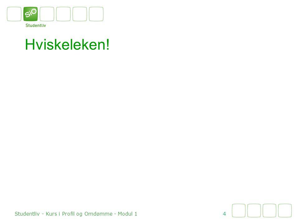 Hviskeleken! 4 Studentliv - Kurs i Profil og Omdømme - Modul 1