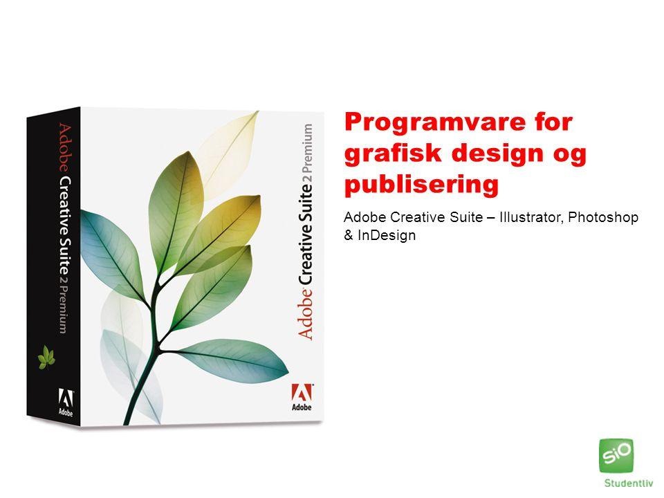Programvare for grafisk design og publisering Adobe Creative Suite – Illustrator, Photoshop & InDesign