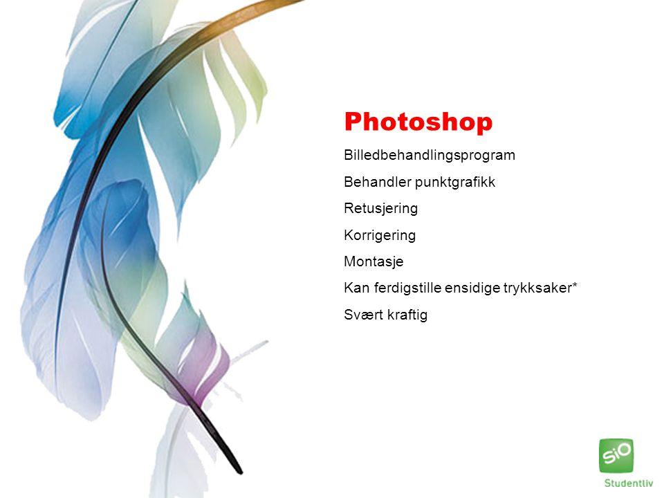 Photoshop Billedbehandlingsprogram Behandler punktgrafikk Retusjering Korrigering Montasje Kan ferdigstille ensidige trykksaker* Svært kraftig