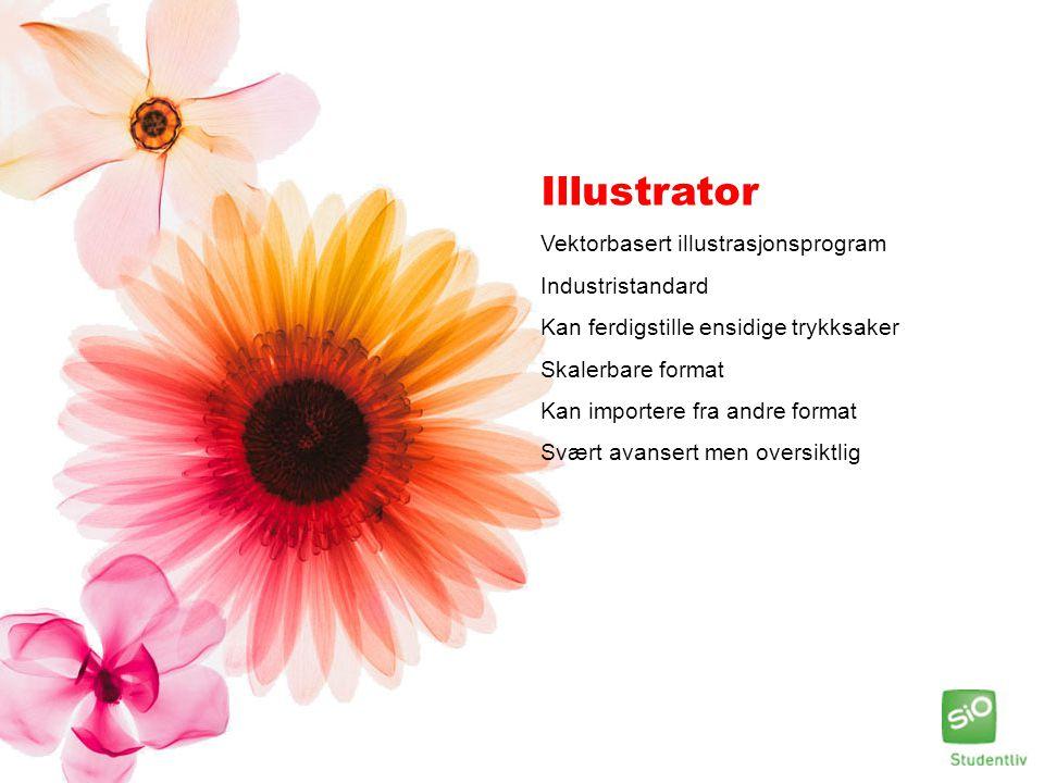 Illustrator Vektorbasert illustrasjonsprogram Industristandard Kan ferdigstille ensidige trykksaker Skalerbare format Kan importere fra andre format S